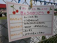 DSC_4533